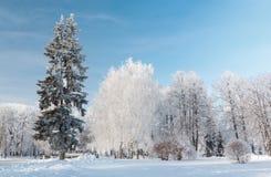 Paisaje urbano del invierno. Yaroslavl, Rusia Imagen de archivo