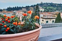 Paisaje urbano del italiano de la opinión del balcón Imágenes de archivo libres de regalías