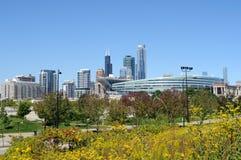 Paisaje urbano del otoño de Chicago -- Horizontal Fotografía de archivo
