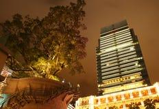 Paisaje urbano en la noche. Edificio moderno y árbol grande. fotografía de archivo