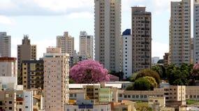 Paisaje urbano en Uberlandia, el Brasil fotografía de archivo