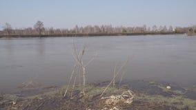 Paisaje ventoso del río almacen de video