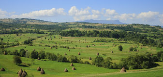 Paisaje verde Foto de archivo libre de regalías