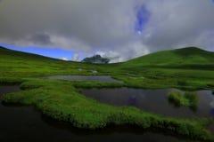 Paisaje verde Imagen de archivo libre de regalías
