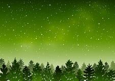 Paisaje verde con el bosque conífero stock de ilustración