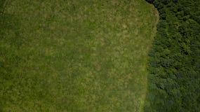 Paisaje verde con el bosque y el meadowv - opinión aérea del plumón superior imagen de archivo libre de regalías