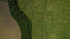 Paisaje verde con el bosque y el meadowv - opinión aérea del plumón superior foto de archivo libre de regalías