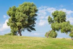 Paisaje verde con el fondo del cielo azul Imagen de archivo libre de regalías