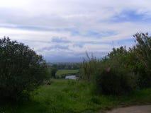 Paisaje verde corso con el río Fotos de archivo
