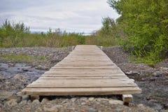 Paisaje verde de la naturaleza islandesa con las piedras cubiertas por el musgo con las montañas en el fondo Fotografía de archivo libre de regalías