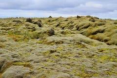 Paisaje verde de la naturaleza islandesa con las piedras cubiertas por el musgo con las montañas en el fondo Fotos de archivo