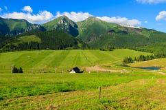 Paisaje verde hermoso del verano de las montañas de Tatra en el pueblo de Zdiar, Eslovaquia Fotografía de archivo
