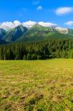 Paisaje verde hermoso del verano de las montañas de Tatra en el pueblo de Zdiar, Eslovaquia Foto de archivo