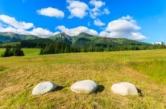 Paisaje verde hermoso del verano de las montañas de Tatra en el pueblo de Zdiar, Eslovaquia Imagen de archivo