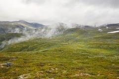 Paisaje verde noruego de la montaña con el camino secundario Noruega h Imagen de archivo libre de regalías