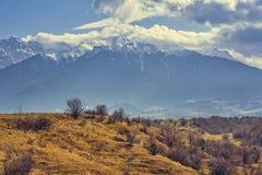 Paisaje vernal de las montañas de Bucegi Foto de archivo