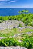 Paisaje vertical de la costa de mar sueca en estación de primavera Fotos de archivo
