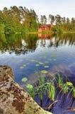 Paisaje vertical y natural sueco Foto de archivo