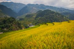 Paisaje Vietnam Fotografía de archivo libre de regalías