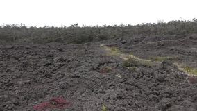 Paisaje volcánico Hawaii almacen de metraje de vídeo