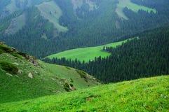 Paisaje de la montaña de Tianshan Foto de archivo libre de regalías