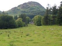 Paisaje y casa de campo de la montaña fotografía de archivo