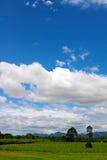 Paisaje y cielo azul Fotografía de archivo libre de regalías