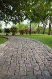 Paisaje y el camino en el jardín Foto de archivo