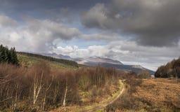 Paisaje y montañas del bosque de Glenrickard Fotografía de archivo