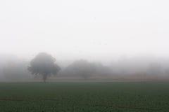 Paisaje y niebla Foto de archivo libre de regalías