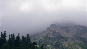 Paisaje y nubes del pico de montaña que flotan en cielo sobre timelapse verde del bosque metrajes