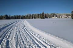 Paisaje y rastros del invierno para los esquiadores Fotografía de archivo libre de regalías