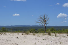 paisajes Imagen de archivo libre de regalías