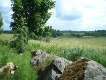 paisajes Foto de archivo libre de regalías