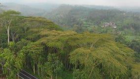 Paisajes aéreos de campos, de colinas y de pueblos indonesios en la isla de Bali almacen de video