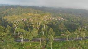Paisajes aéreos de campos, de colinas y de pueblos indonesios en la isla de Bali almacen de metraje de vídeo