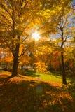 Paisajes coloridos del paisaje de la caída Fotografía de archivo