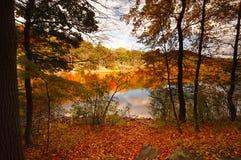 Paisajes coloridos del paisaje de la caída Imagenes de archivo