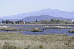 Paisajes de la reserva natural de Diaccia Botrona Imagen de archivo libre de regalías