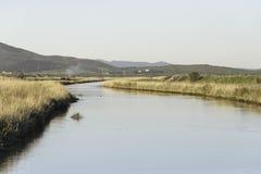 Paisajes de la reserva natural de Diaccia Botrona Fotografía de archivo libre de regalías