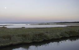 Paisajes de la reserva natural de Diaccia Botrona Fotografía de archivo