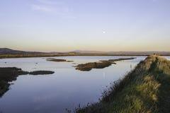 Paisajes de la reserva natural de Diaccia Botrona Fotos de archivo