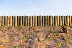 Paisajes de Log Poles Gardening de la cerca Foto de archivo