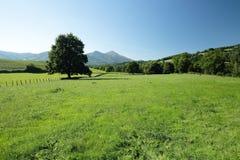 Paisajes de Navarra Foto de archivo