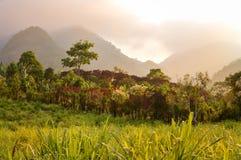 Paisajes de niebla que rodean el pequeño pueblo de los cultivadores del café en las montañas de Honduras America Central Foto de archivo libre de regalías