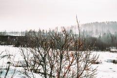 Paisajes de Ural Fotos de archivo