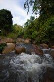 Paisajes del fondo de la cascada Fotos de archivo