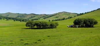 Paisajes del prado Imagen de archivo