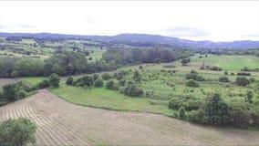 Paisajes hermosos, prados y bosques, de las alturas almacen de metraje de vídeo