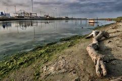 Paisajes marinos toscanos Fotografía de archivo